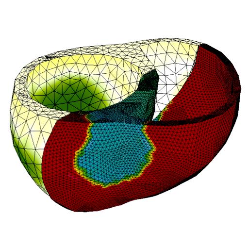 A Flexible High Performance Approach to Cardiac Electromechanics